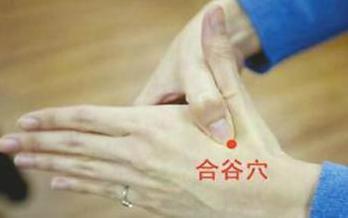 四慧穴_针刺保健常用到的五大穴位_即慧中医_新浪博客